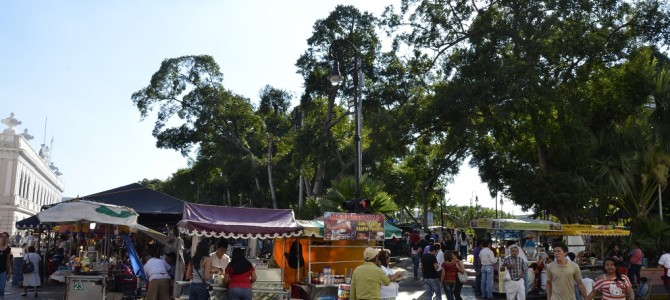 Sunday Market at the Main Plaza